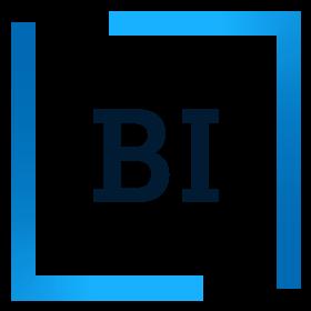 Programmeinfo BI